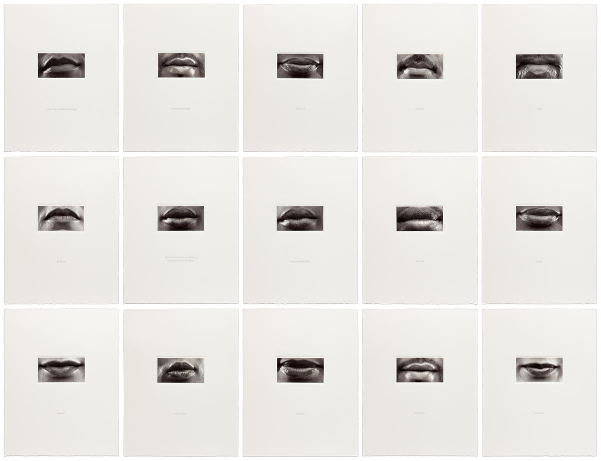 "#LornaSimpson's ""15 Mouths""(2002) consists of 15 photographs of diverse, closely cropped images of mouths, with by texts ranging from tactile adjectives like ""sumptuous"" and ""meaty"" to descriptions like ""a voice that darkened with age.""  #BlackHistoryMonth #contemporaryart"