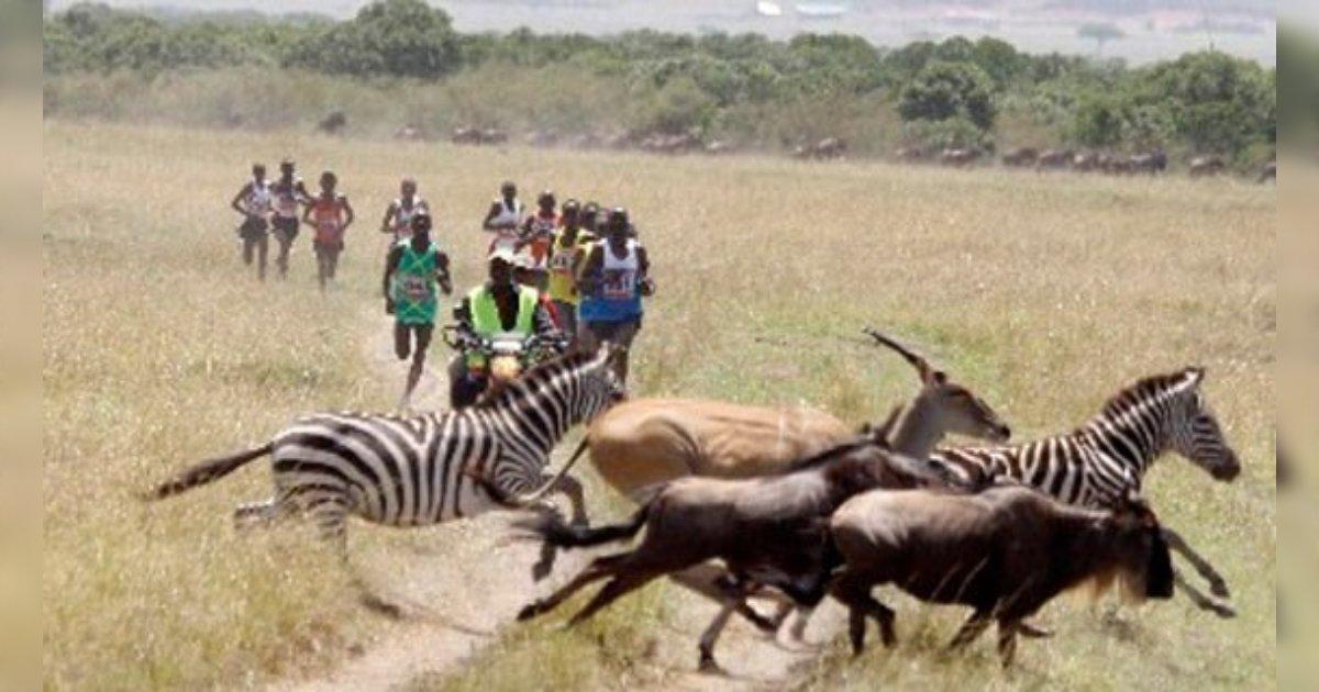 人類は長く走り続ける能力を身に着けたことで狩猟を可能にし生き延びたという名著「BORN TO RUN」の話を思い出しました。写真はまるで原初の世界のよう。/ケニアのマラソン大会の写真おもしろ。『ずっと見てられるな 』『何やっても合成に見える』