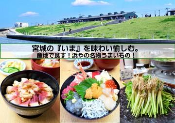 02月06日 08:35 宮城の『いま』を味わい愉しむ。【ほっきめし・海鮮ちらし・せり鍋・せりの天ぷら・閖上の赤貝・閖上北限しらす】産地で食す!浜やの名物うま…