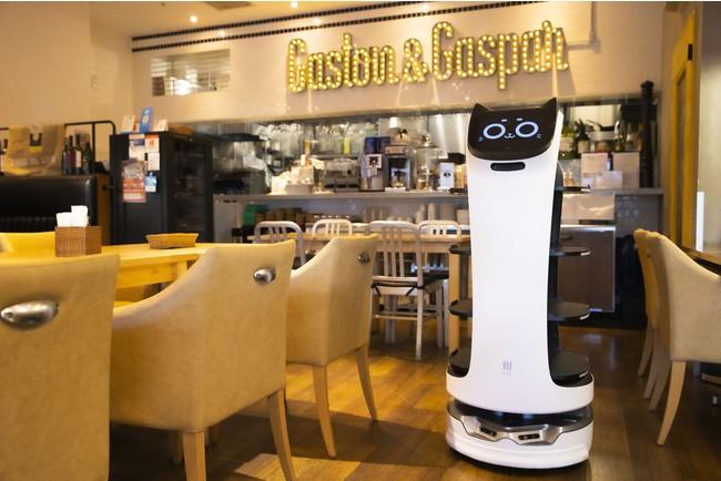 ネコ型ロボットに配膳をお任せ!DFAが自動配膳ロボット【BellaBot】を都内レストランに試験導入 @PRTIMES_JPより