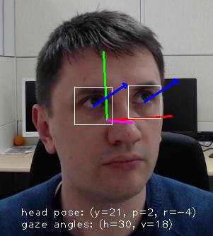 openvino2tensorflow でコレのCaffeからTensorFlow/TensorFlow Liteへの変換ができるようになりました。 open_model_zoo / gaze-estimation-adas-0002