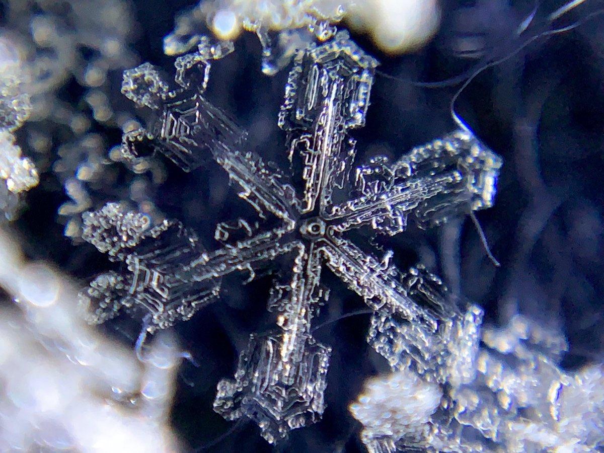 さきほどオンライン開催した2020年度積雪観測&雪結晶撮影講習会での講演映像を公開しました.