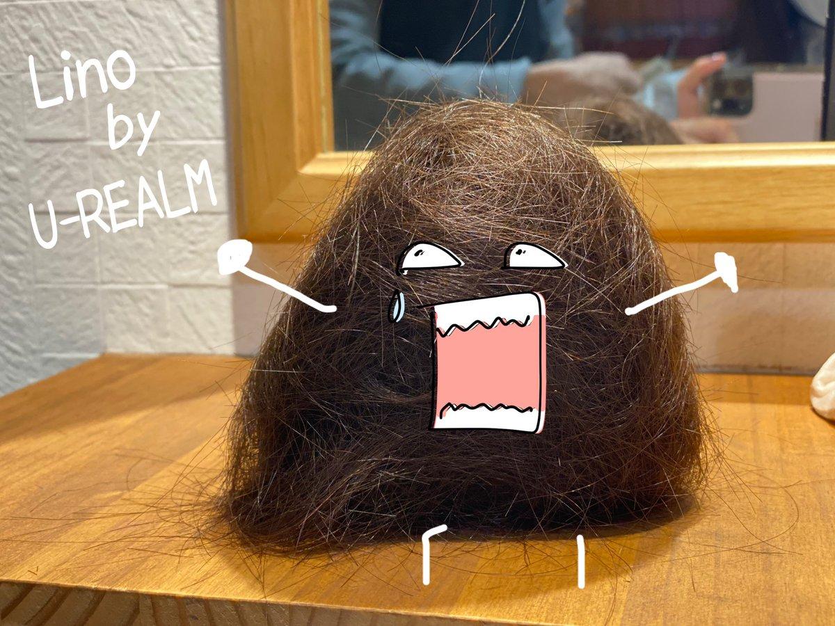 ヘアカット&カラーしてきました‼︎Lino by U-REALMいつも翔太さんありがとうございます❤️いつも自分の髪の毛でこの子を作るのがマイブームです。髪の毛は芸術🎨笑special thanks⇩