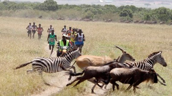 ケニアのマラソン大会の写真おもしろ。『ずっと見てられるな 』『何やっても合成に見える』 - Togetter選手をドローンで追跡撮影ができればサファリマラソンはおもしろいコンテンツになる