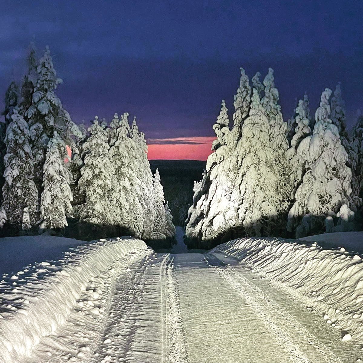 WRC: Arctic Rally Finland - Powered by CapitalBox [26-28 Febrero] Etj32AgXEAMhI65?format=jpg&name=medium