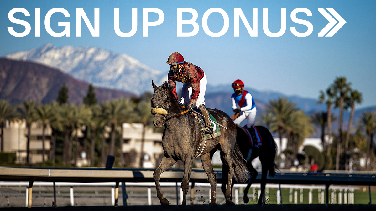 Horse betting tips twitter sign 2nd half betting rules texas