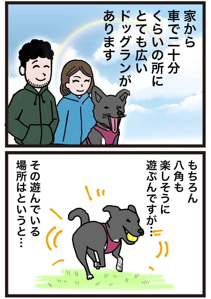 ドッグランで遊ぶ八角を見ていて思ったことを漫画に描いてみました!#犬漫画 #犬のいる暮らし #犬好きな人と繋がりたい #漫画 #マンガ #イラスト