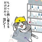 満タンの一斗缶を傾ける現場猫…!嫌な予感しかしない!