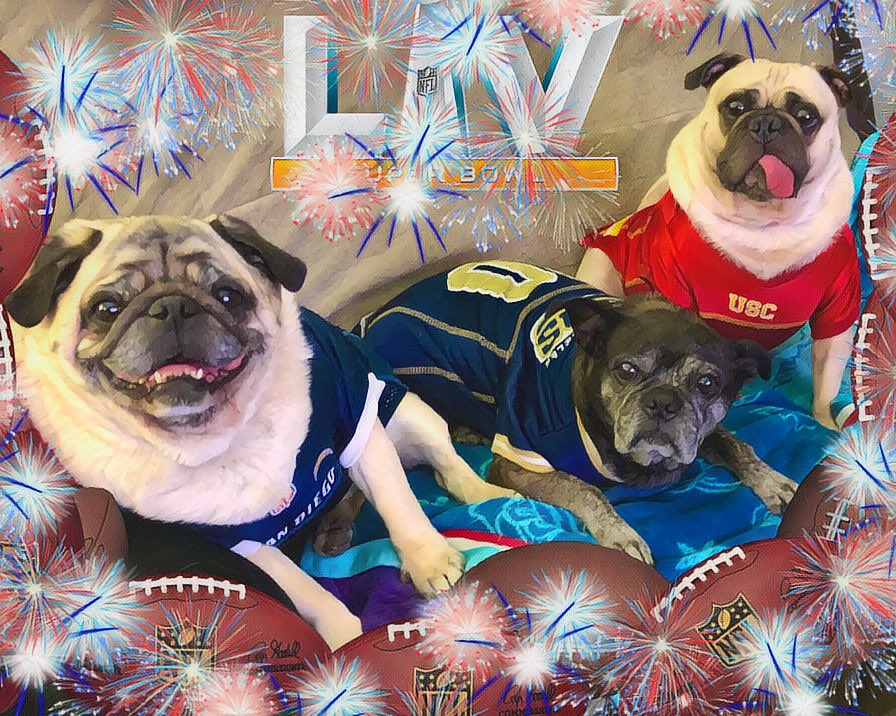 """""""Furiends celebrating Supper Bowl wif da Bacon..ears and Cheese..ffs, and we're wondering where's da snackies!""""🏈🍗-Max  #max #pug #dog #friends #food #snacks #besties #football #SuperBowl #KansasCityChiefs #CelebratingAmerica #foodies #TampaBayBuccaneers #Playtime #theweeknd💋"""