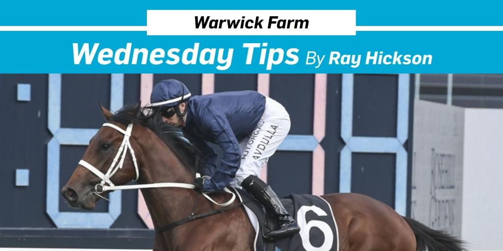 horse betting tips twitter kim