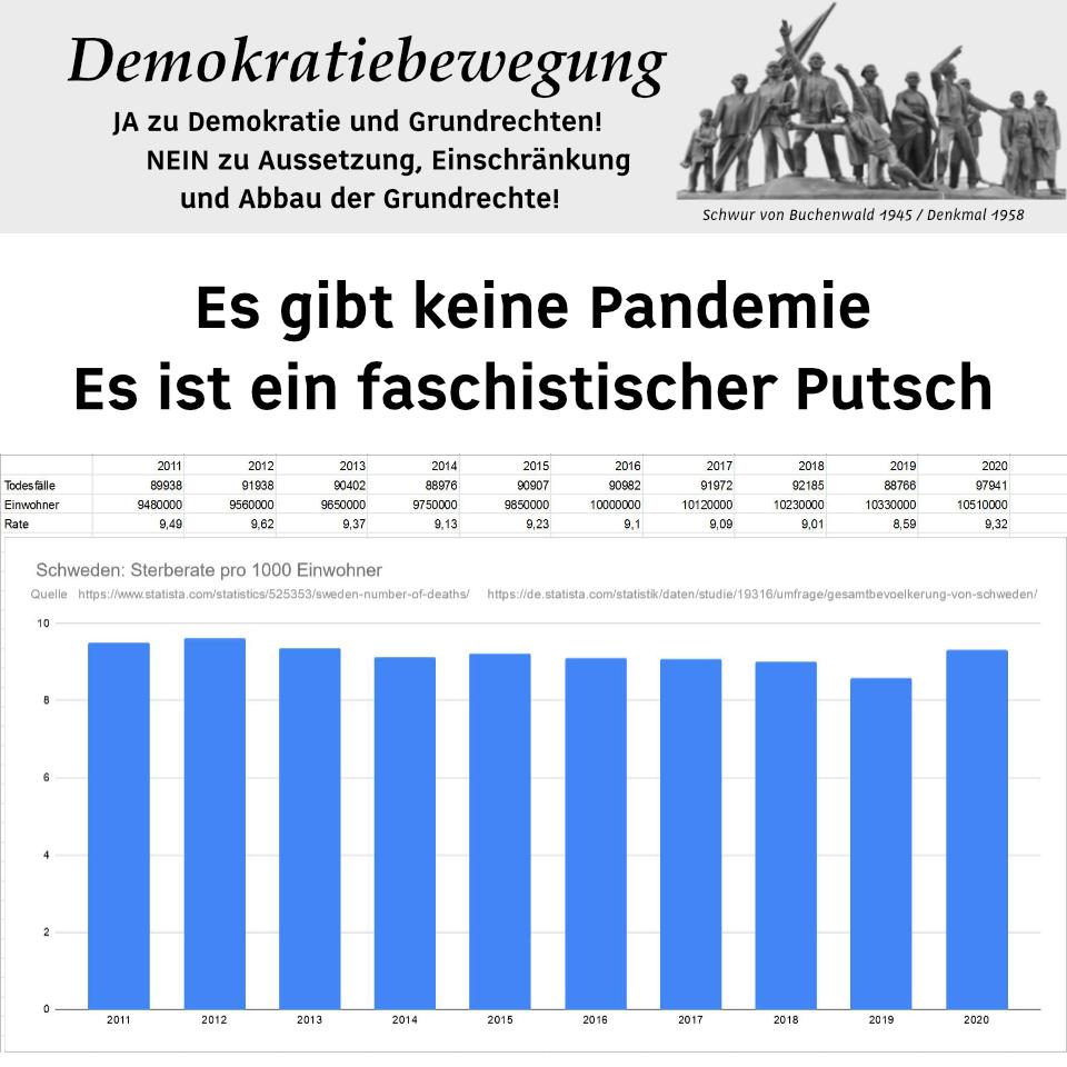 Es gibt keine Pandemie - Es ist ein faschistischer Putsch