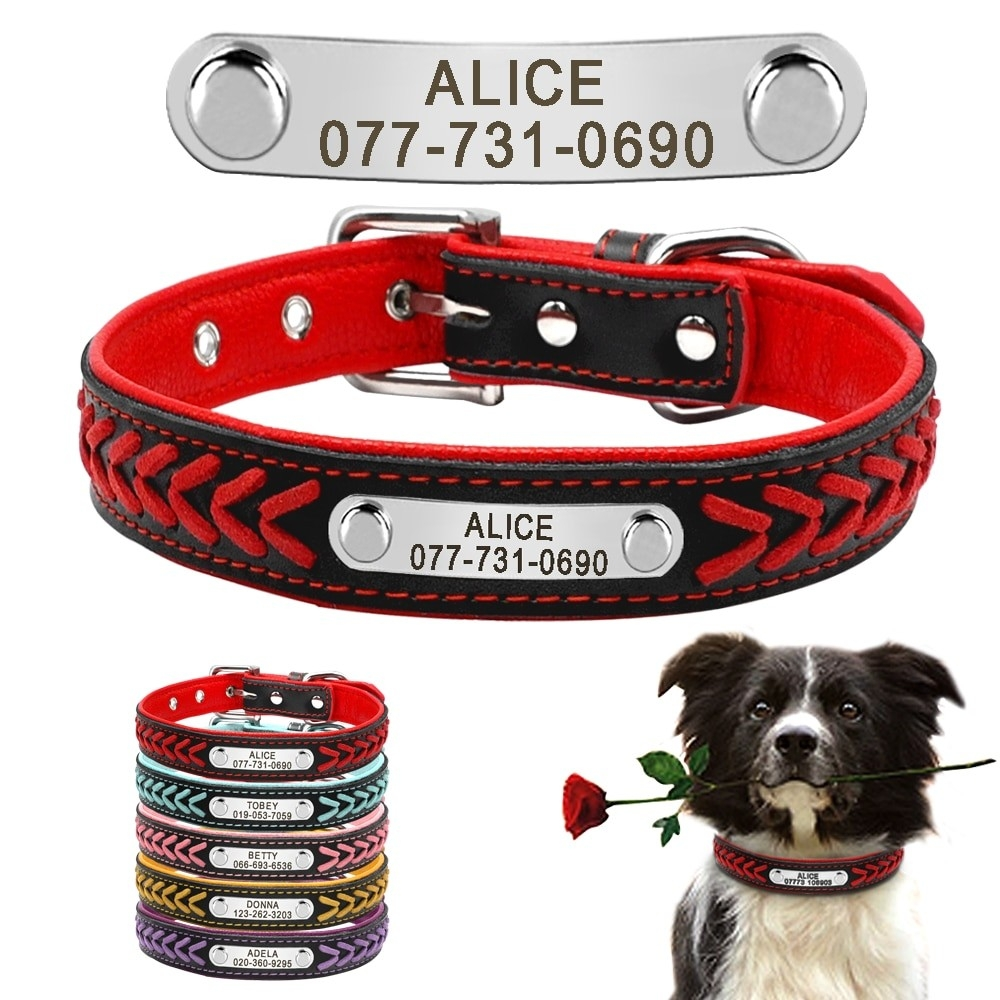 Personalized Name Plate Cat/Dog Leather Collar Bseelo - Simple Pets Neccessities Buy your pets' stuff @  Follow, Tag, and Share.  #SundayMorning #dogslover #Cats #dogs