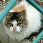 zzsasaki705のサムネイル画像