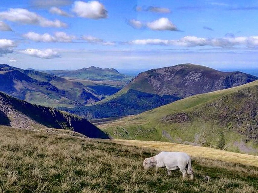 test Twitter Media - The view from Clogwyn ❤️  One we'll be seeing again soon 🤞  #Snowdon #Snowdonia #NorthWales https://t.co/mOkR3089e9