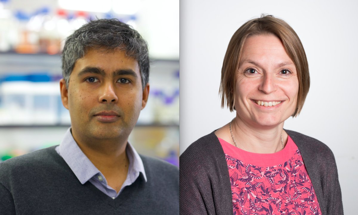 Image for Two #researchprojects led by @dundeeuni researchers have been awarded over €4 million from the European Research Council #ConsolidatorGrant competition. https://t.co/C9FMq8gQwj https://t.co/L