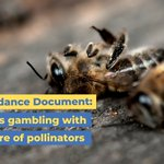 Image for the Tweet beginning: #BeeGuidance Document: @eu_commission and member
