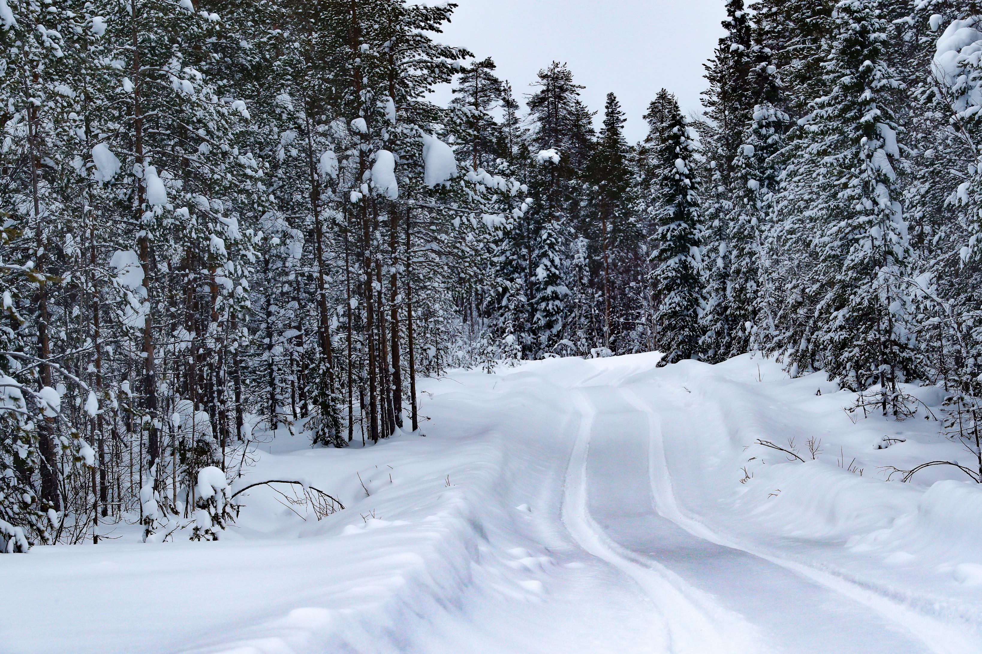 WRC: Arctic Rally Finland - Powered by CapitalBox [26-28 Febrero] Eu2NieaWYAY6MsM?format=jpg&name=4096x4096