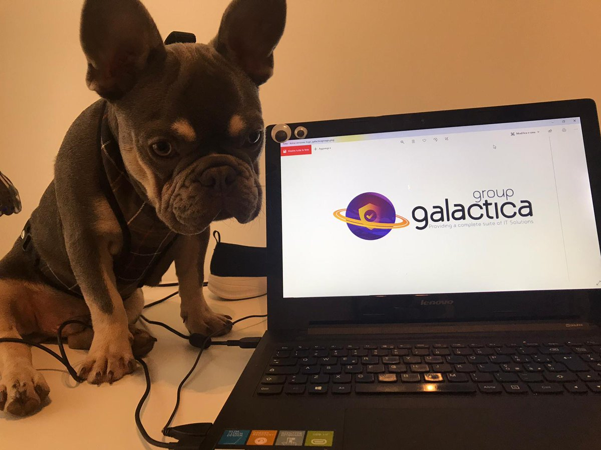 GalacticaGroup photo