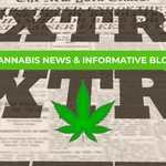 Image for the Tweet beginning: Breaking news on everything #cannabis,