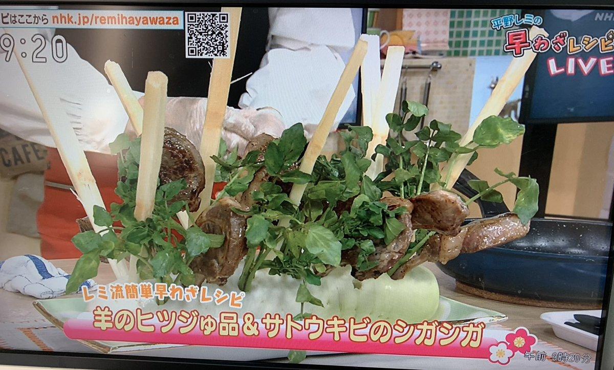早わざ 平野 レシピ の レミ
