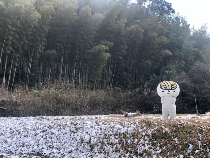 udonnowwの画像