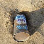 今では見ることはない?鳥取砂丘で50年前の「ファンタ」空き缶が発見される!