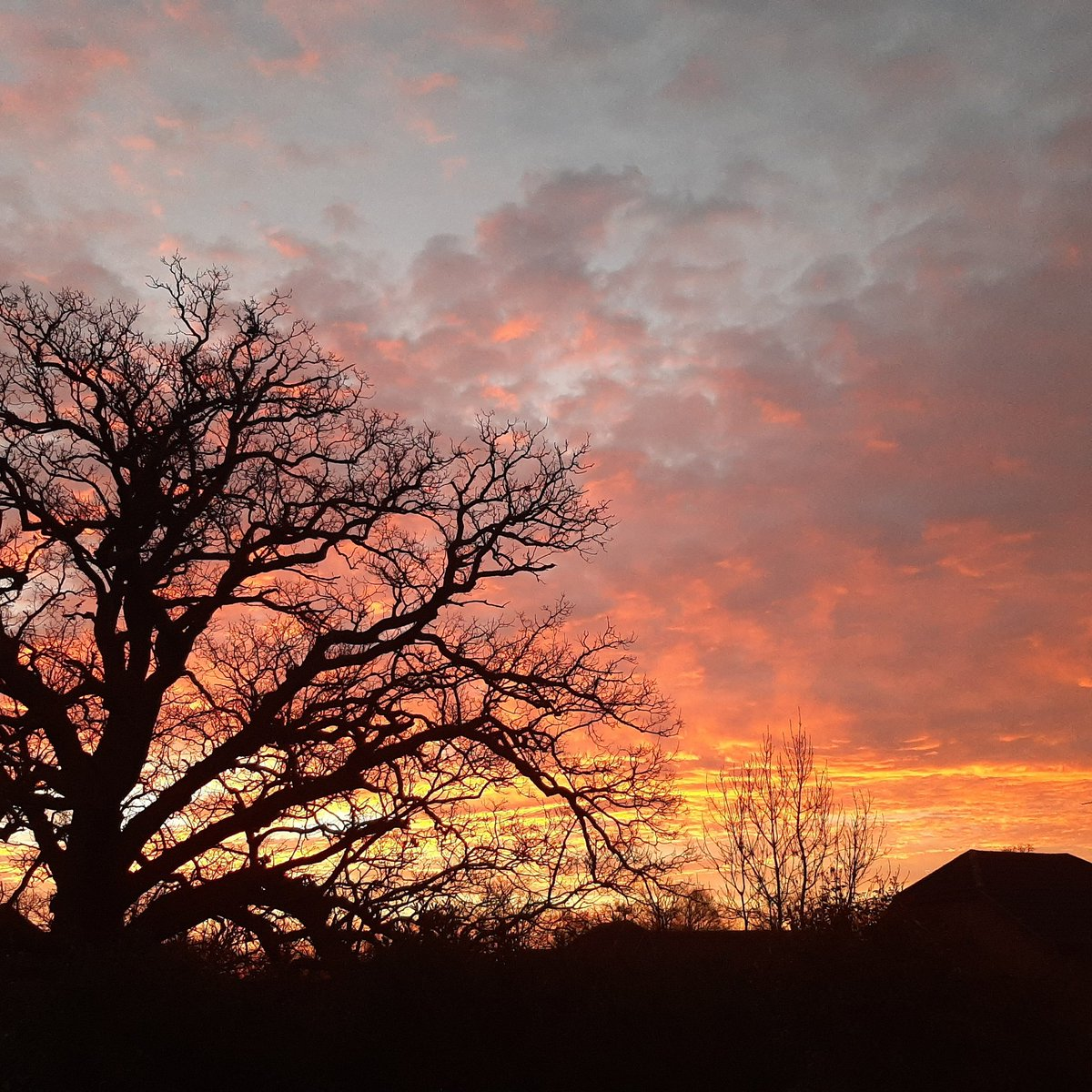 Can't beat a pretty start to the day!  @BBCWthrWatchers @BBCSouthWeather @bbcweather @AlexisGreenTV #bbcweatherwatchers #berkshire #sunrise #tuesdaymorning #tuesdaymotivations #myweather