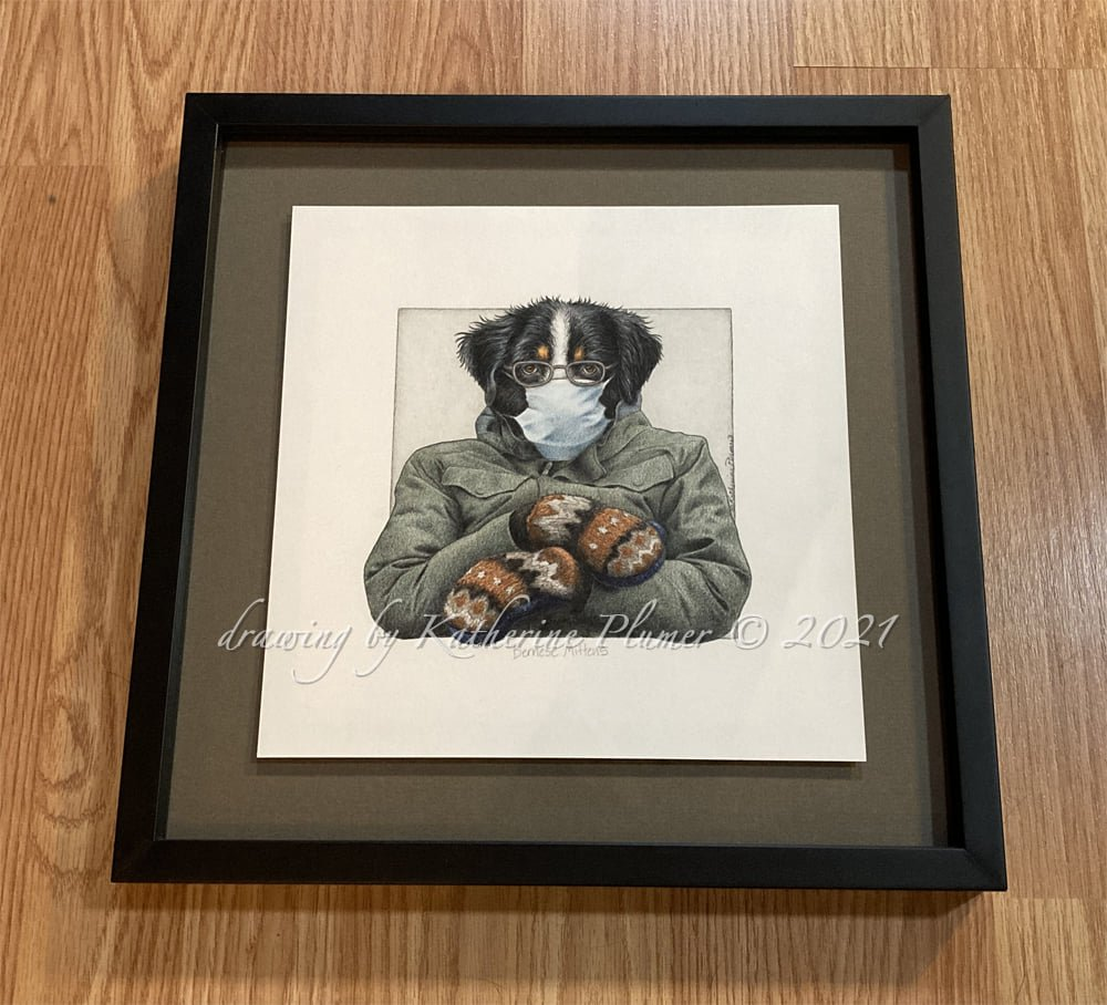 "This Incredible work of colored pencil art, ""Bernese Mittens"" is on auction till 2/24. Framed dimensions 13.25 x 13.25 inches. Float mounted, under glass. @BernieSanders #BernieMittens #BerneseMittens #BerneseMountainDog"