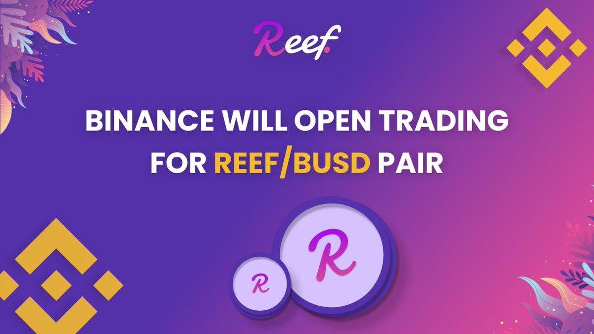 通貨 reef 仮想