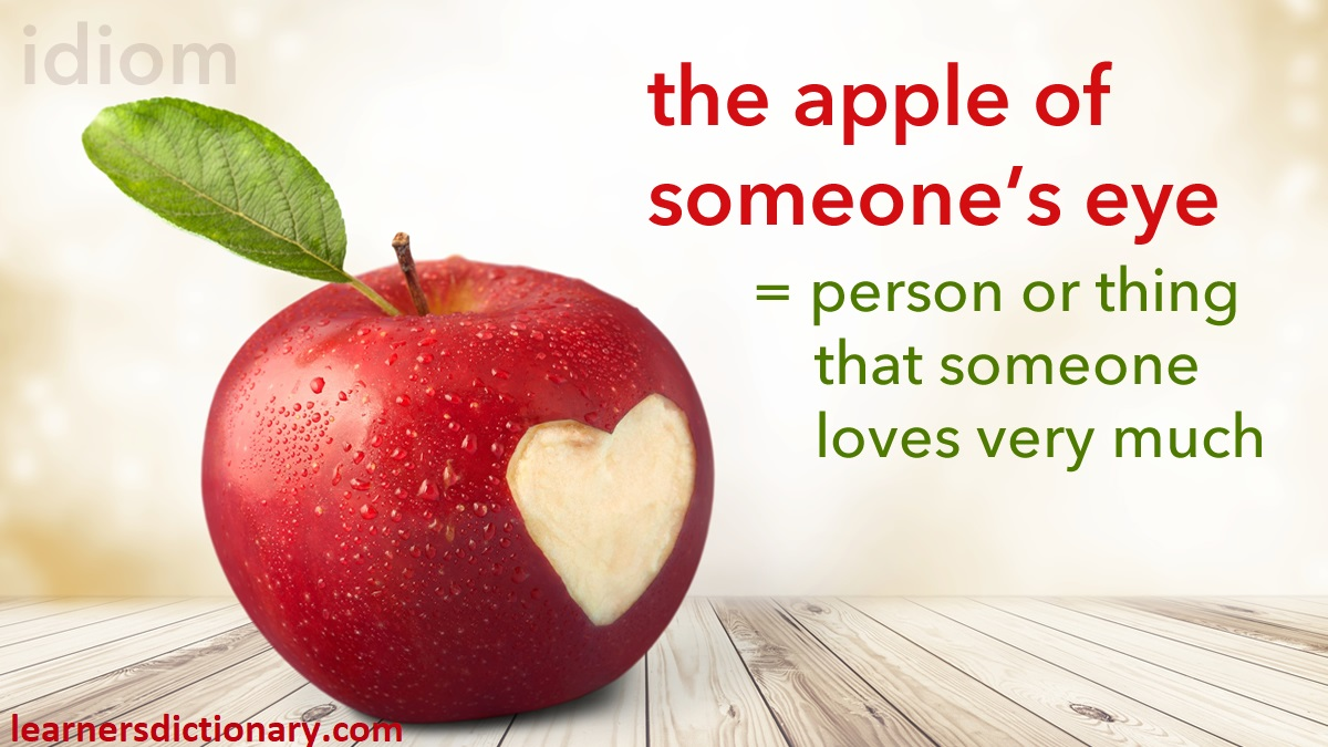 Idiom: the apple of someone's eye  = a person or thing that someone loves very much   His daughter is the apple of his eye.  https://t.co/gvMl0pDcyo #ESL #EFL #ELL #TESOL #TEFL #Idioms #LearnEnglish https://t.co/zQBDDoA4zr