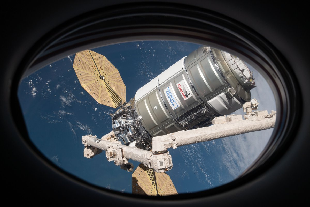 The Cygnus space freighter was captured at the station early Monday carrying about four tons of gear for the Exp 64 crew. Hi-res pix📸...