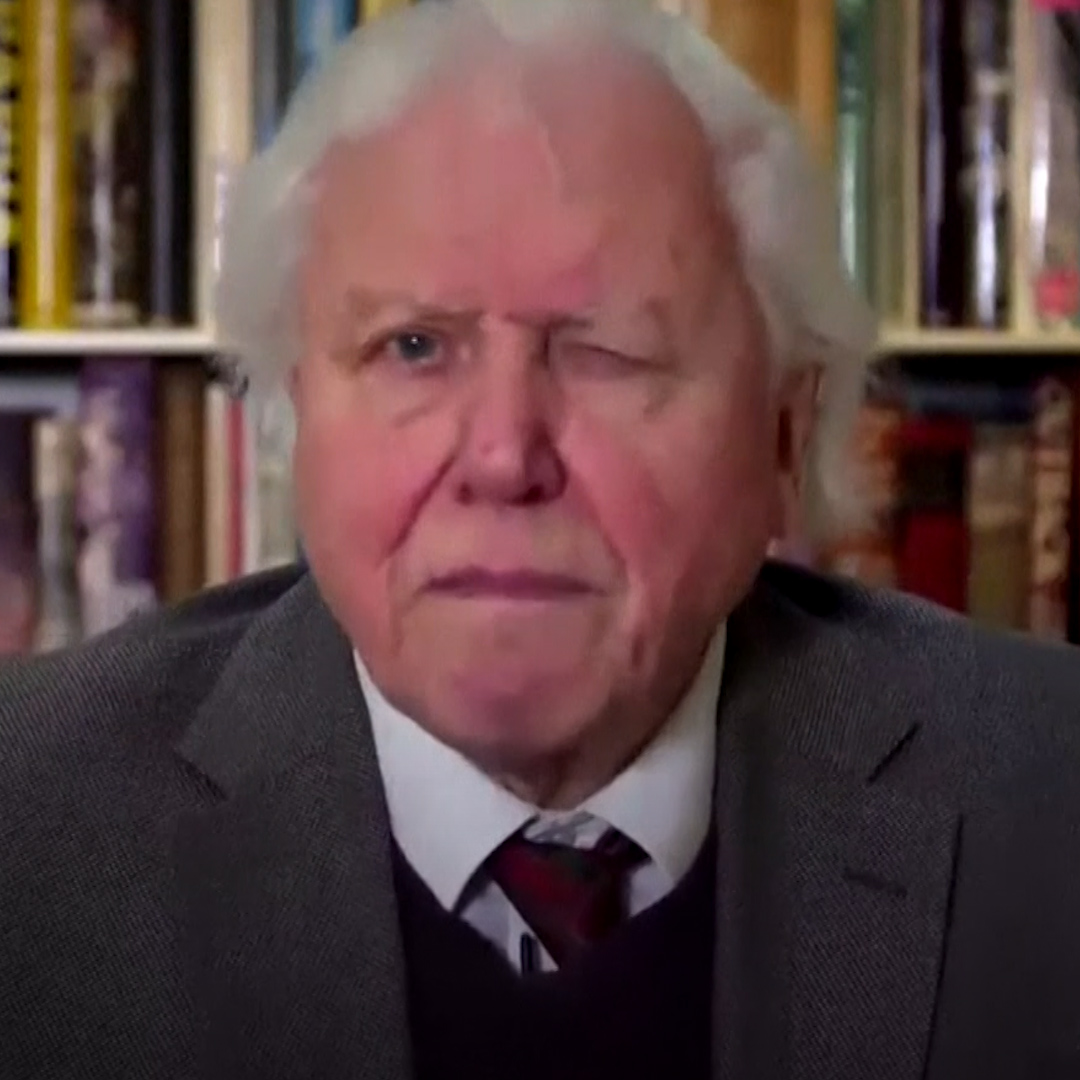 No matter what we do now, its too late to avoid climate change. British naturalist David Attenborough gave a stark warning to the UN Security Council to address the climate crisis.
