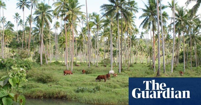 Kiribati and China to develop former climate-refuge land in Fiji Photo