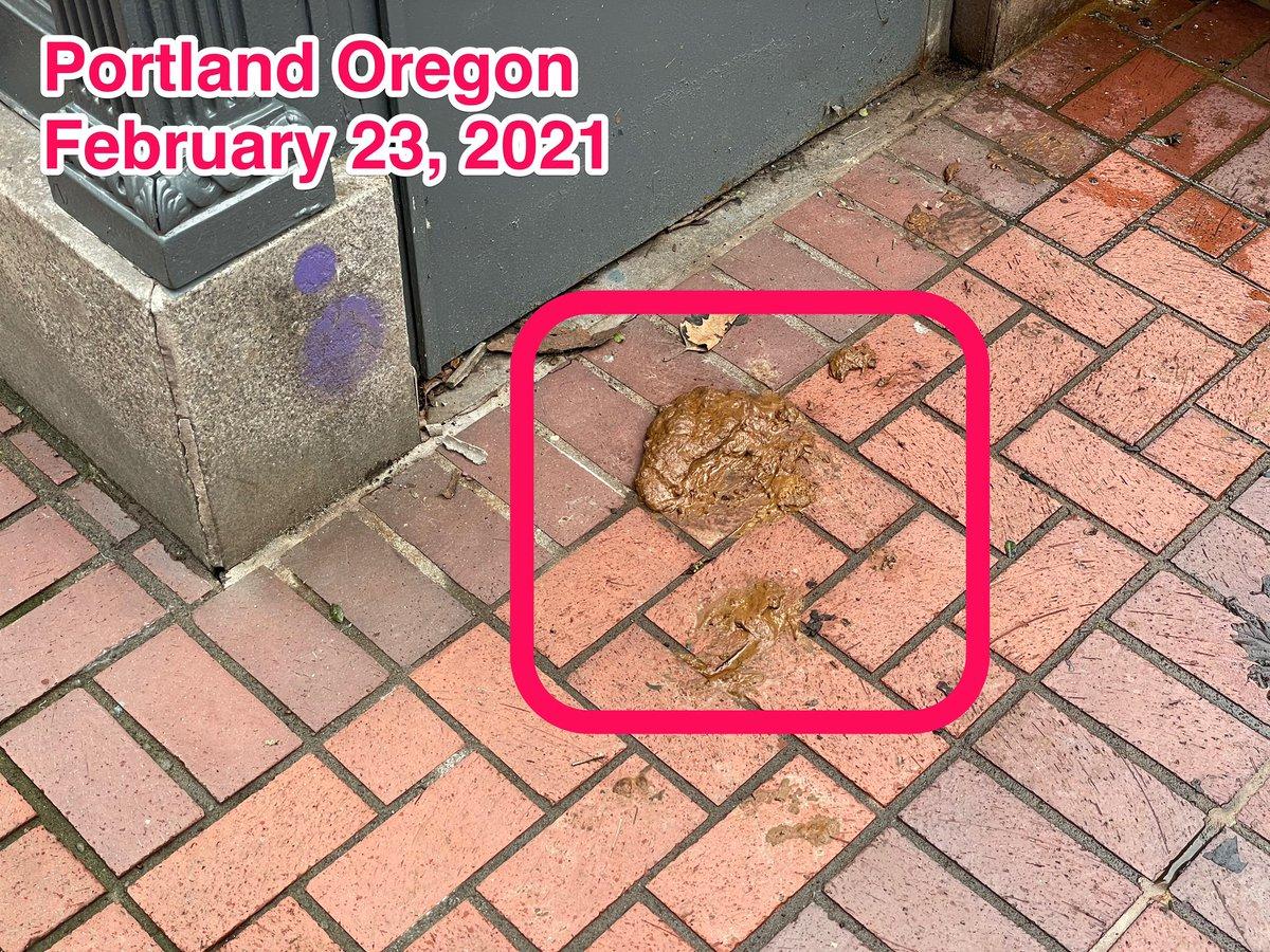 PortlandPHLUSH photo