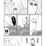 xxshirokuro26xxのサムネイル画像