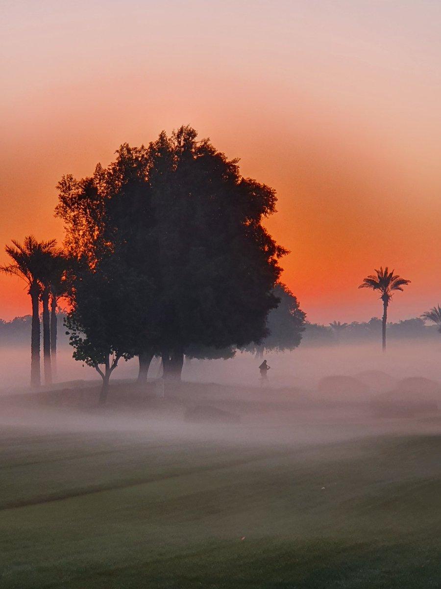 Omega Dubai Desert Classic 2021. #oddc #omega #golf #europeantour #golf #fog #dubai #dubaidesertclassic #desertclassic