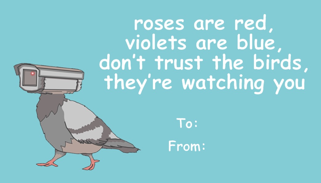 Valentine's message saying roses are red, violets are blue, don't trust the birds, they're watching you.