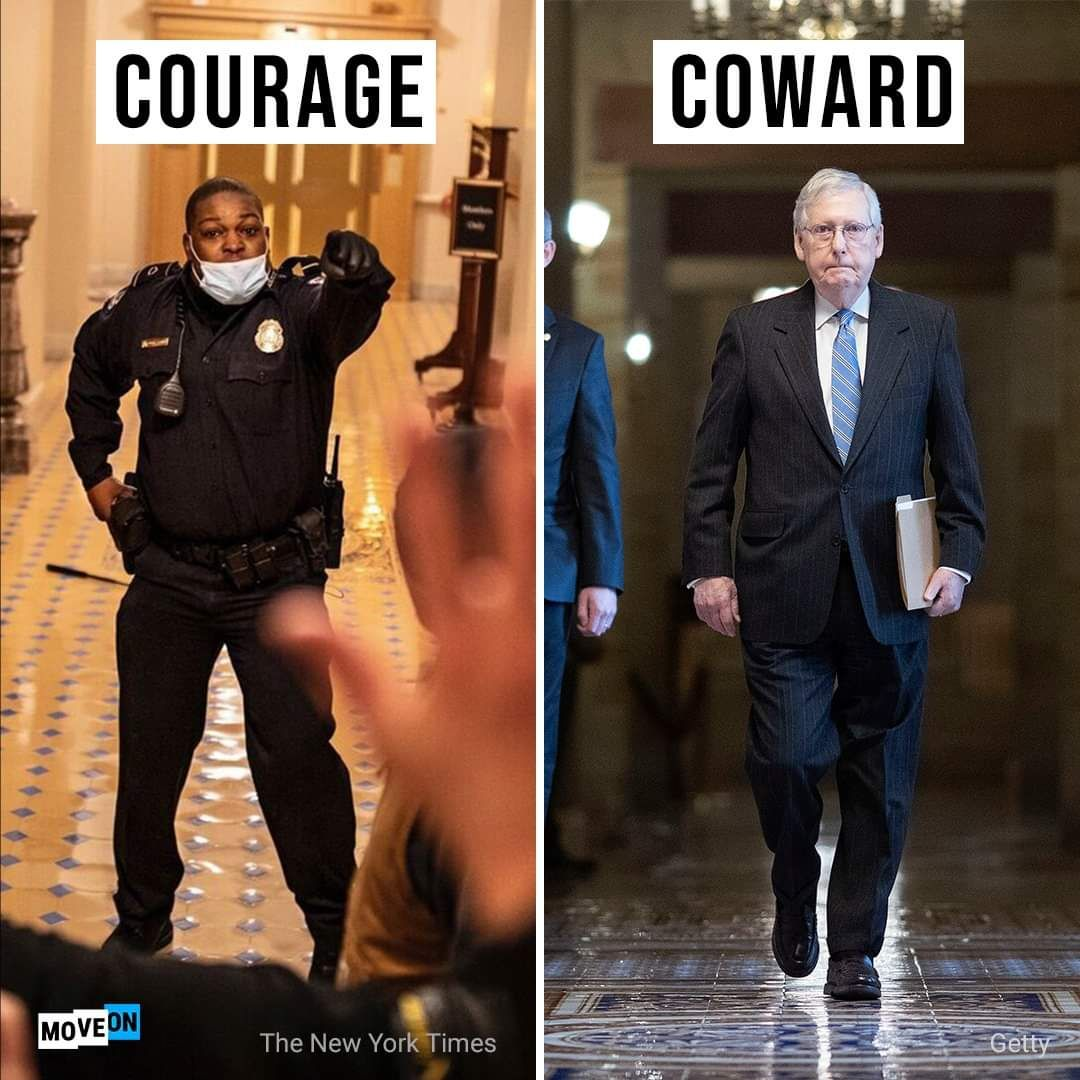 Replying to @DearAuntCrabby: Courage vs Coward