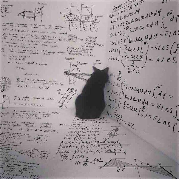 Meanwhile, inside the box, Schrödingers cat plans its revenge.