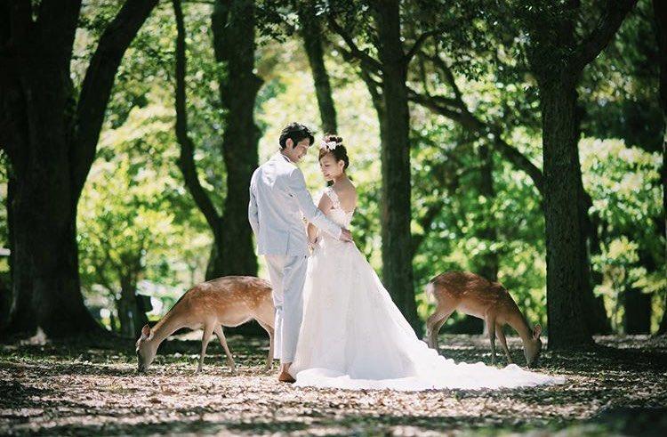 奈良での撮影はカメラより鹿せんべいの配置が大事