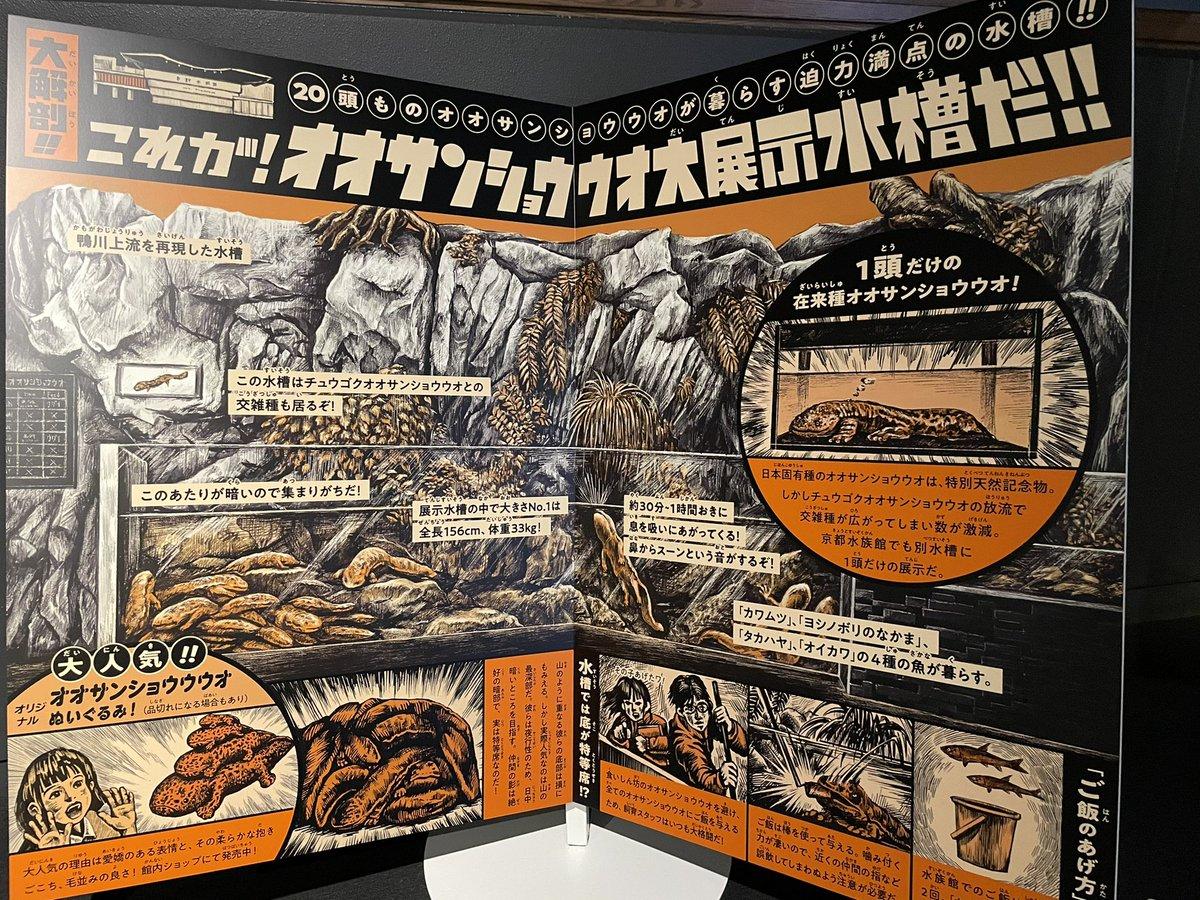 京都水族館のわかってる感がヤバい。 コレ、冊子じゃなくてデカいサインだからね。 #京都水族館