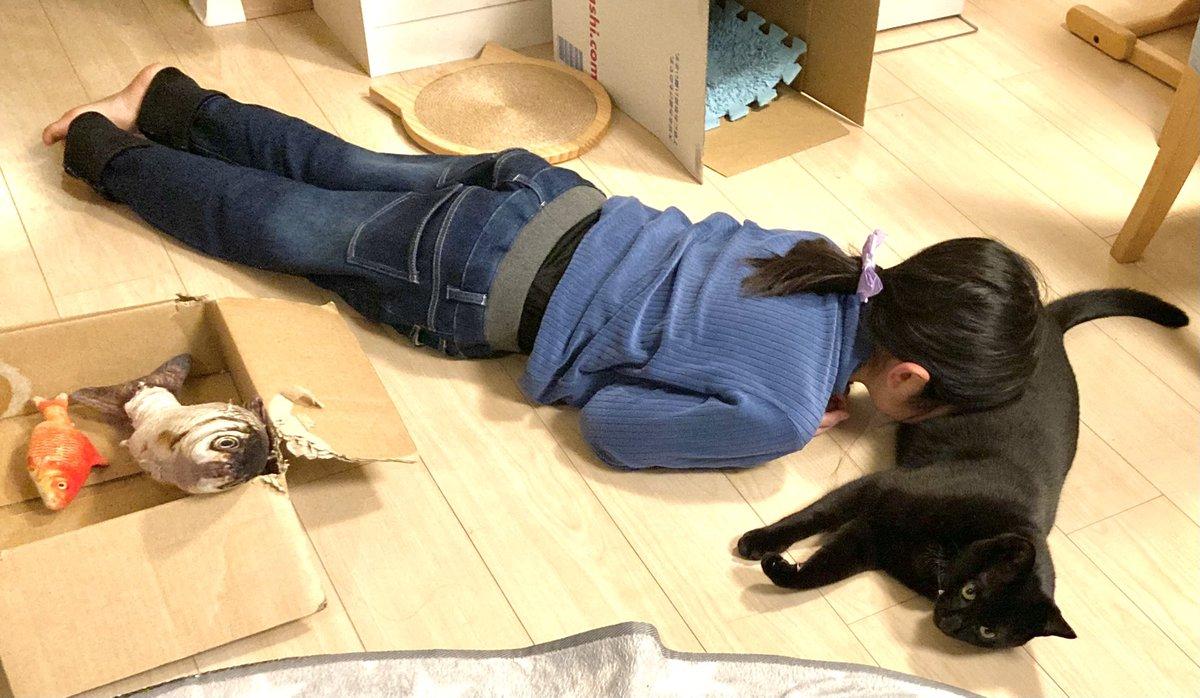 夕方娘と黒猫が家の中で追いかけっこして遊んでて大騒ぎしてたのに突然静かになったので様子を見に行った結果