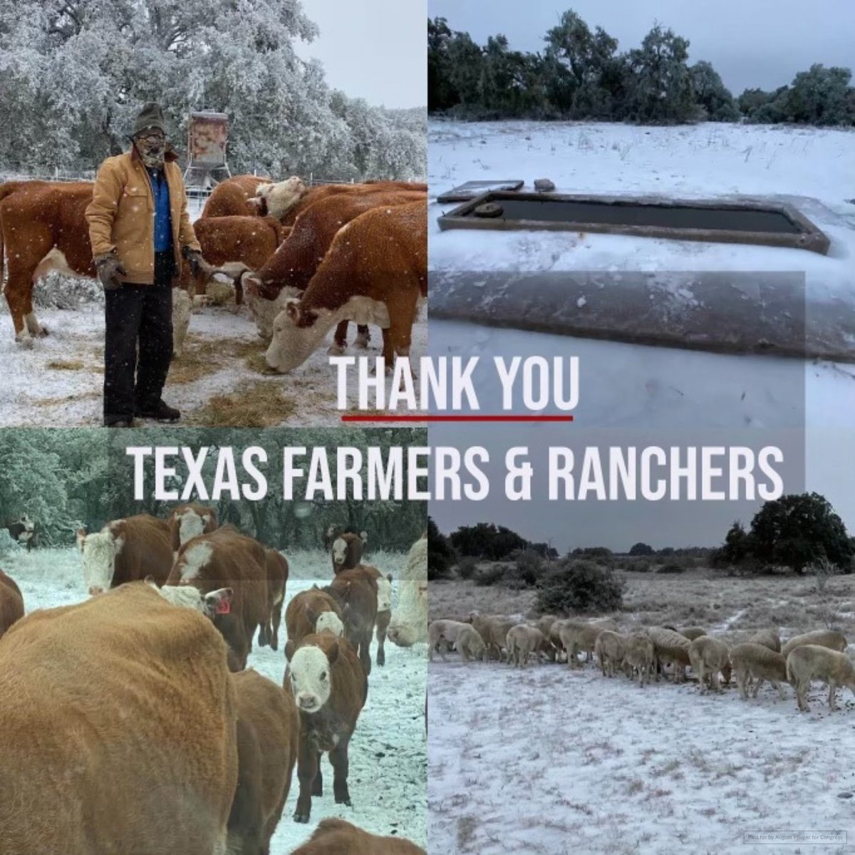 Farmers and ranchers never rest. It's a 24/7 job that only 2% of our country knows anything about—but ALL Americans eat. Oh by the way...food DOES NOT grow on shelves! Thank you to all the farmers and ranchers across Texas who are braving these extreme weather conditions.