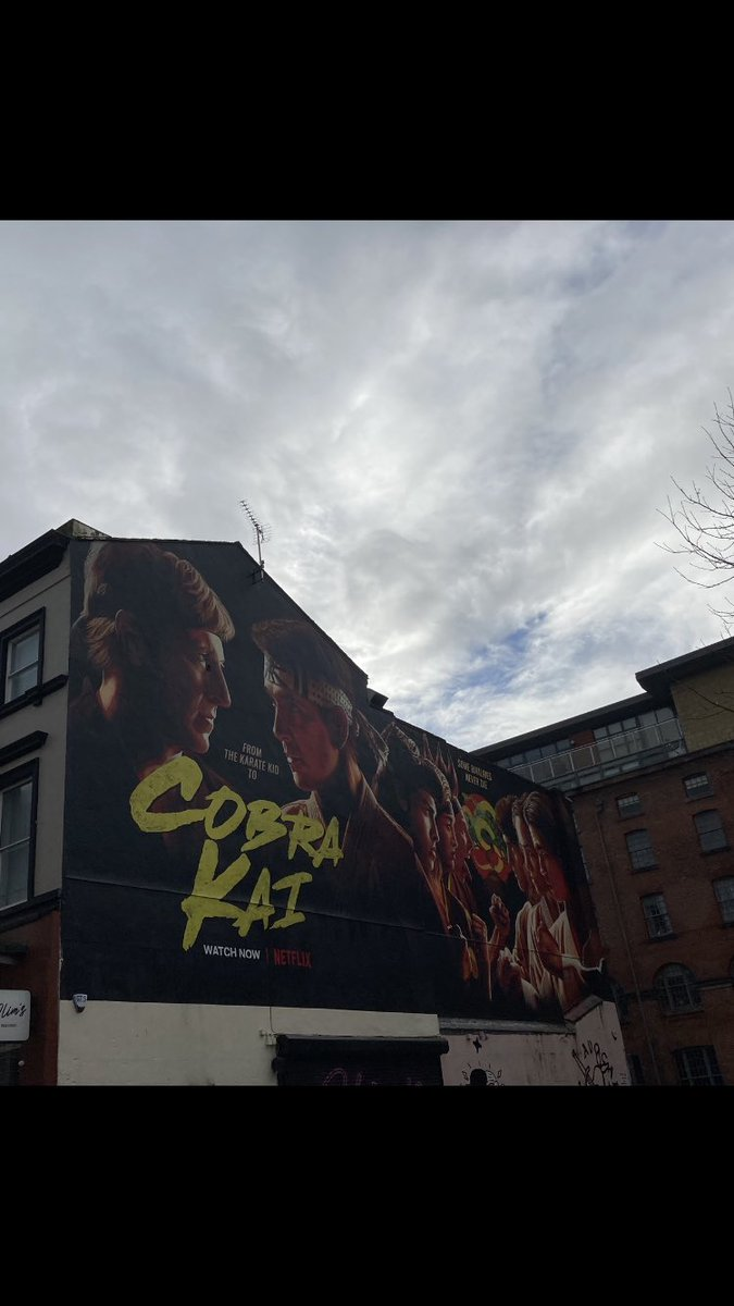 Saw this mural of Cobra Kai when I was walking along Bold street today. How good is that.