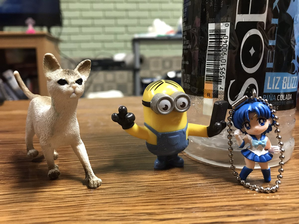 Participants in the imprinting. #toys #playdo #cat #Minions #SailorMercury