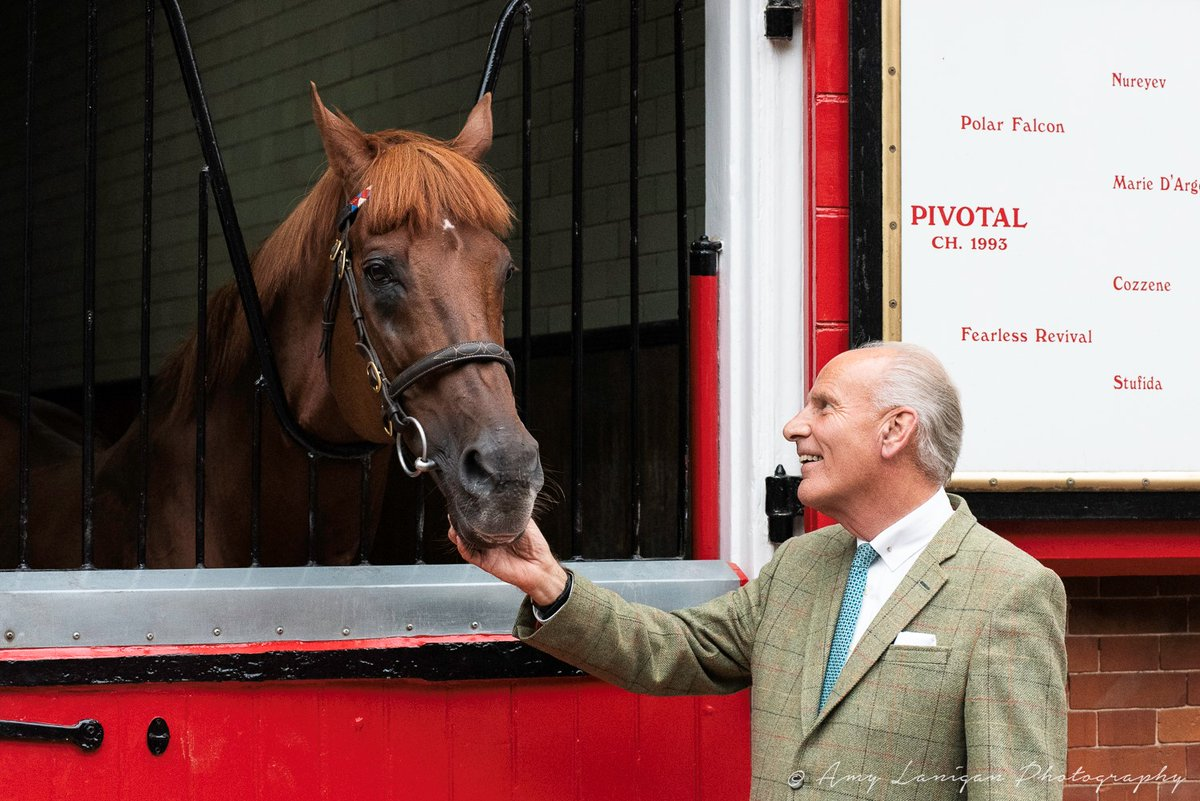 The 'mighty' PIVOTAL has been retired from stallion duties. He will now enjoy a happy retirement at @CPStudOfficial, where he will see out the rest of his years.  Read the full story here 👉https://t.co/uydeUgGQCQ