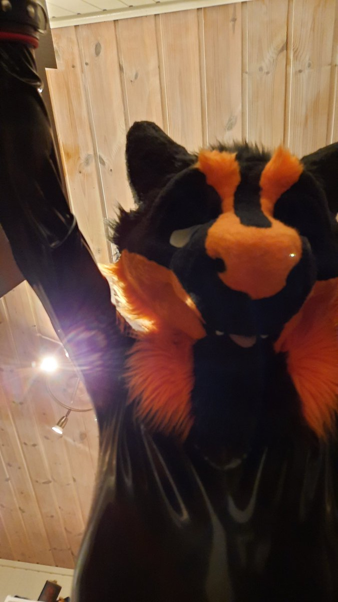 Pov: I pin you down in bed for latex snuggles, and maybe other things😏😏  #LatexFur #rubberfur #latex #rubberslave #fursuit #Sergal