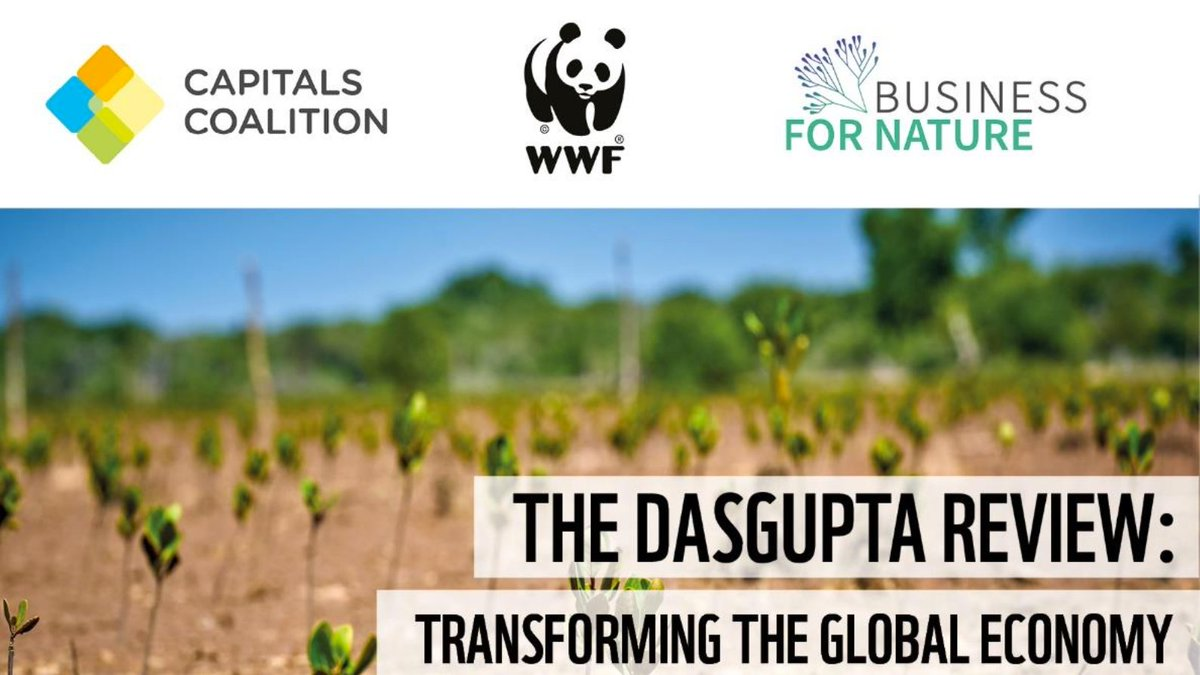 Last chance to sign up for our event with @WWF & @BfNCoalition starting at 1pm GMT.  We'll explore the findings & implications of the Review & highlight urgent actions needed to put the global economy on a sustainable path in the run up to @UNFCCC COP26 & @UNBiodiversity COP15.