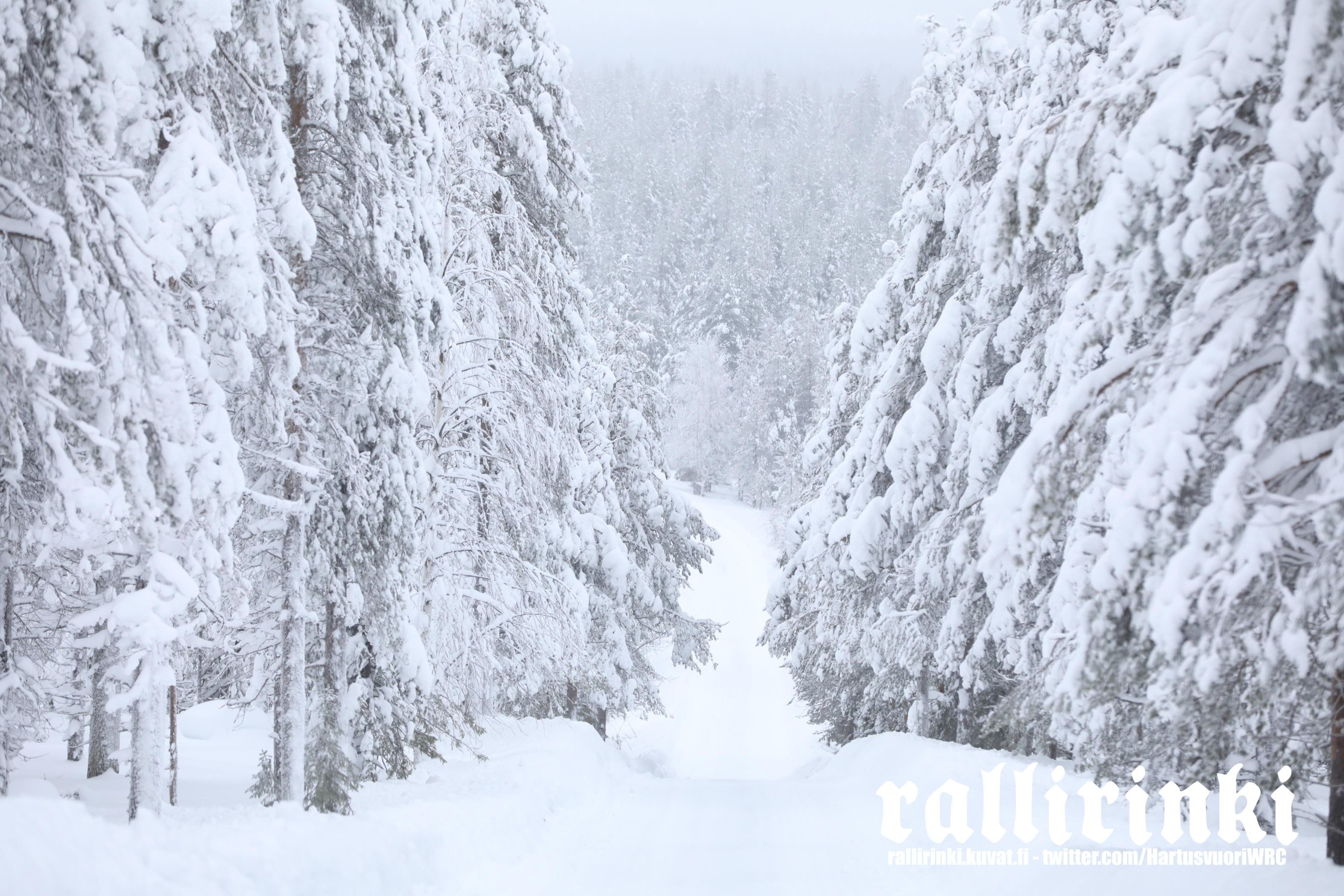 WRC: Arctic Rally Finland - Powered by CapitalBox [26-28 Febrero] Eu_LiE1XMAgN04L?format=jpg&name=4096x4096
