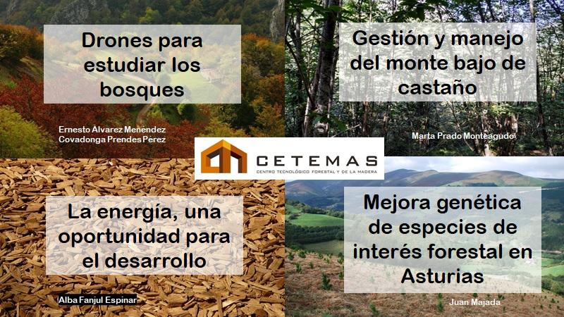 Fundación CETEMAS